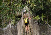 À voir et à découvrir pendant vos vacances en famille en Martinique