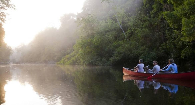 Quelle est la meilleure période pour aller en Guyane ?