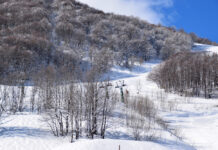 Les stations de ski proches de Monaco