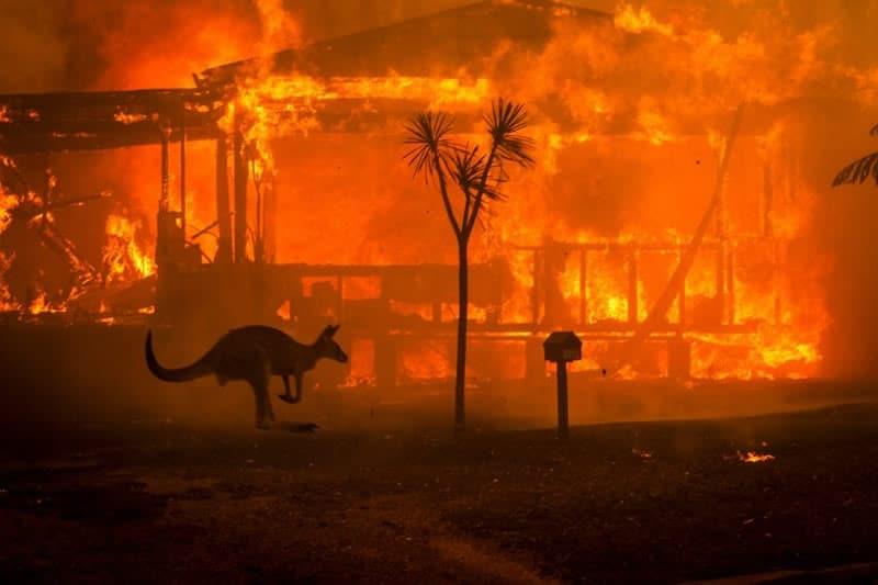 Où en sont les incendies en Australie ?