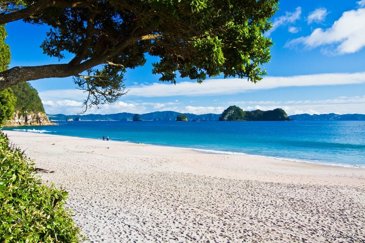 plage nouvelle zelande